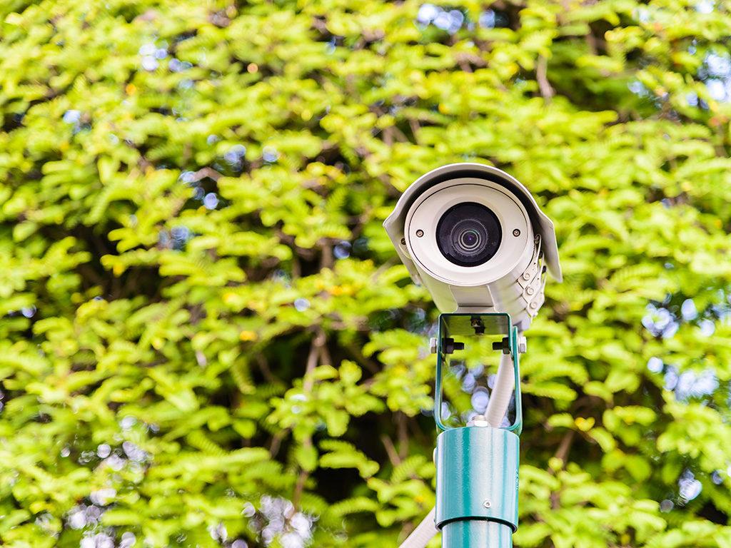 sistema di allarme perimetrale con telecamere da esterno